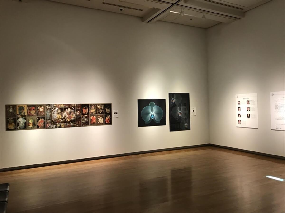展示されていた静止画部門の受賞作品の写真①
