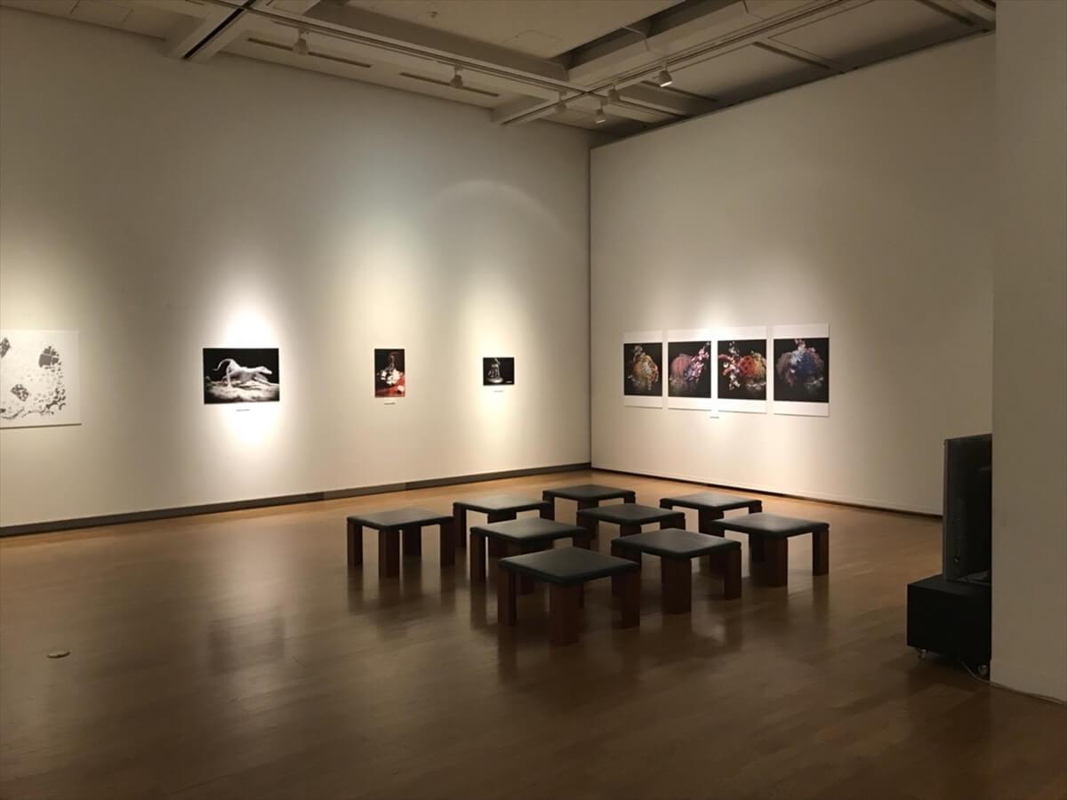 展示されていた静止画部門の受賞作品の写真②