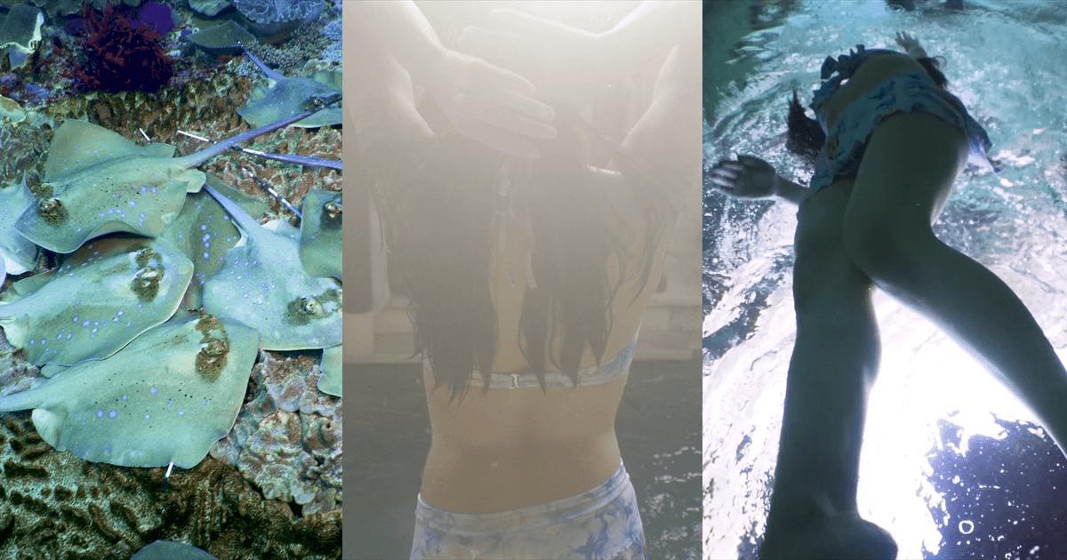 制作実績:バリ島サンプル水中映像のサムネイル画像